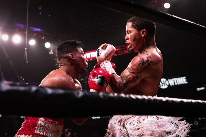 davis-gamboa-fight (5)
