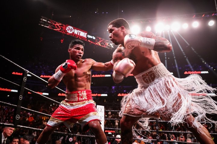 davis-gamboa-fight (12)